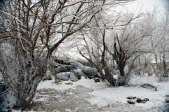 καιρικός χειμώνας ακτών παραλιών νεφελώδης στοκ εικόνες