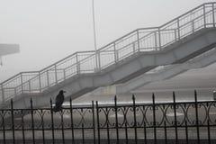 και σκαλοπάτια στη για τους πεζούς γέφυρα ομίχλης στοκ εικόνες