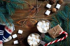 Κακάο με marshmallow, τη σοκολάτα και τους κομψούς κλάδους σε ένα ξύλινο υπόβαθρο στοκ εικόνες