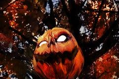 Κακή κολοκύθα - φανάρι γρύλων Ο στοκ φωτογραφία με δικαίωμα ελεύθερης χρήσης