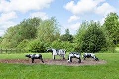 Κακόφημες συγκεκριμένες αγελάδες στο Milton Keynes στοκ εικόνες