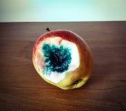 Κακό δηλητηριασμένο μήλο Στοκ φωτογραφία με δικαίωμα ελεύθερης χρήσης