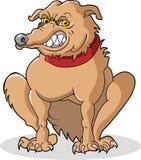 κακό σκυλί Στοκ εικόνα με δικαίωμα ελεύθερης χρήσης