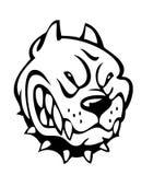 κακό σκυλί Στοκ εικόνες με δικαίωμα ελεύθερης χρήσης