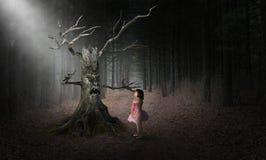 Κακό τέρας αποκριών δέντρων, κορίτσι, υπερφυσικό στοκ εικόνες με δικαίωμα ελεύθερης χρήσης