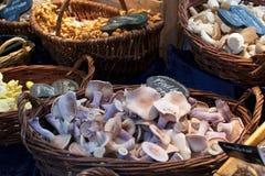 Καλάθια των μανιταριών για την πώληση σε μια αγορά στοκ εικόνες