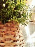 Καλάθι ανθοδεσμών λουλουδιών επετείου εορτασμών Στοκ Εικόνες
