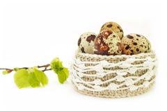 Καλάθι δαντελλών τσιγγελακιών λινού με τα αυγά Πάσχας Η άνοιξη ο κλάδος δέντρων με τα πράσινους φύλλα και τους οφθαλμούς και τα α στοκ φωτογραφίες με δικαίωμα ελεύθερης χρήσης
