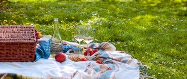 Καλάθι και τρόφιμα πικ-νίκ γυαλιά μπουκαλιών δύο κρασί romanica Πράσινο λιβάδι με τα λουλούδια Άνοιξη στις Κάτω Χώρες διακοπές Στοκ Φωτογραφίες