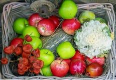 Καλάθι με τα πράσινα, κόκκινα μήλα και τα κολοκύθια στοκ εικόνα με δικαίωμα ελεύθερης χρήσης