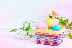 Καλάθι του Κυνηγίου αυγών Πάσχας στον άσπρο πίνακα με τα άνθη ανοίξεων με το άσπρο υπόβαθρο πινάκων Shiplap με το δωμάτιο ή το δι Στοκ Εικόνες