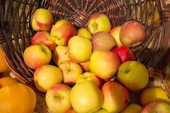Καλάθι των μήλων στην αγορά Στοκ φωτογραφία με δικαίωμα ελεύθερης χρήσης