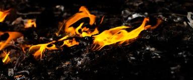 καλή κυριώτερη μαλακή κατακόρυφος φλογών πυρκαγιάς λεπτομέρειας ανασκόπησης μαύρη στοκ εικόνα