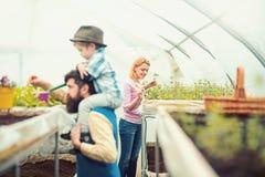 Καλή ξανθή κυρία στη ρόδινη ζακέτα που φυτεύει τα λουλούδια με λίγο φτυάρι κηπουρικής Γενειοφόρο παιδί εκμετάλλευσης ατόμων πλάγι στοκ εικόνες με δικαίωμα ελεύθερης χρήσης