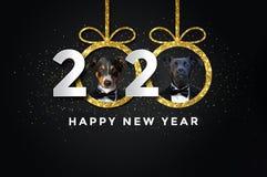 Καλή χρονιά 2020 με δύο σκυλιά απεικόνιση αποθεμάτων