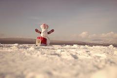 Καλή χρονιά με το χιονάνθρωπο Ευτυχές ζεύγος Snowmans Εορτασμός Snowmans Χιονάνθρωπος στη ρόδινη περούκα και γάντια με το πακέτο  Στοκ φωτογραφία με δικαίωμα ελεύθερης χρήσης