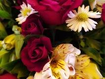 Καλή floral ρύθμιση στοκ εικόνες