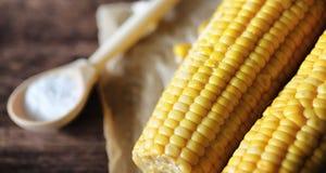καλαμπόκι φρέσκο Φυσικά τρόφιμα από το σπάδικα καλαμποκιού με το αλάτι Αγροτικός μεξικανός Στοκ εικόνες με δικαίωμα ελεύθερης χρήσης