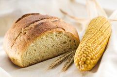 καλαμπόκι ψωμιού στοκ εικόνες