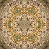 καλειδοσκόπιο χαρακτι Στοκ εικόνες με δικαίωμα ελεύθερης χρήσης