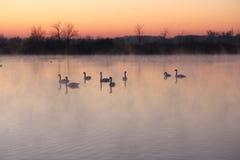 Καλημέρα, χειμώνας στοκ φωτογραφία με δικαίωμα ελεύθερης χρήσης