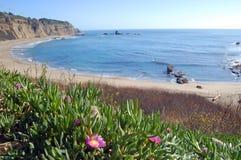 Καλιφόρνια παράκτια Στοκ φωτογραφίες με δικαίωμα ελεύθερης χρήσης