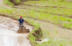 Καλλιέργεια του αγροκτήματος στοκ φωτογραφία με δικαίωμα ελεύθερης χρήσης