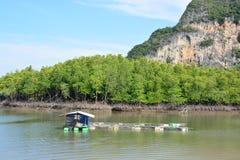 Καλλιέργεια ψαριών, κλουβί ψαριών στη θάλασσα στοκ φωτογραφίες με δικαίωμα ελεύθερης χρήσης