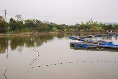 Καλλιέργεια ψαριών στοκ φωτογραφίες με δικαίωμα ελεύθερης χρήσης