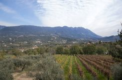 Καλλιεργήσιμα εδάφη με τα βουνά στο υπόβαθρο στοκ φωτογραφία με δικαίωμα ελεύθερης χρήσης