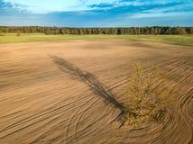 Καλλιεργήσιμο έδαφος άνοιξη Ένας τομέας και ένα μόνο δέντρο επάνω από την όψη Κεραία, κηφήνας Στοκ φωτογραφία με δικαίωμα ελεύθερης χρήσης