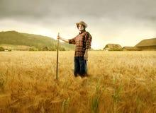 καλλιεργήσιμο έδαφος στοκ φωτογραφίες