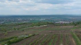 Καλλιεργημένη περιοχή αμπέλων κοντά σε Ploiesti, Ρουμανία, εναέριο μήκος σε πόδηα απόθεμα βίντεο