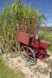 Καλλιεργητής καλάμων για τον κάλαμο ζάχαρης στοκ φωτογραφία