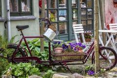 Καλλιεργητής Biicycle Στοκ Φωτογραφίες