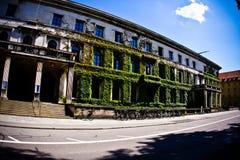 καλλιεργητικό ίδρυμα Στοκ εικόνα με δικαίωμα ελεύθερης χρήσης