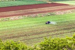 Καλλιεργώντας συγκομιδές τρακτέρ Στοκ φωτογραφία με δικαίωμα ελεύθερης χρήσης