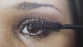 Καλλιτέχνης σύνθεσης που ισχύει eyelash makeup να διαμορφώσει το μάτι ` s στοκ φωτογραφία με δικαίωμα ελεύθερης χρήσης