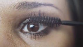 Καλλιτέχνης σύνθεσης που ισχύει eyelash makeup να διαμορφώσει το μάτι ` s 3840x2160 απόθεμα βίντεο