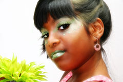 καλλιτεχνικά καλλυντι&k στοκ εικόνες