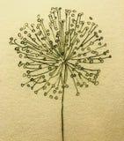 Καλλιτεχνική ζωγραφική έννοιας κινηματογραφήσεων σε πρώτο πλάνο υποβάθρου διακοσμήσεων φύσης floral κινητήρια Στοκ Φωτογραφίες