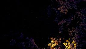 Καλλιτεχνικοί ουρανοί ανωτέρω με τα κίτρινα και πορφυρά δέντρα στοκ φωτογραφία