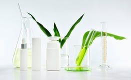 Καλλυντικά εμπορευματοκιβώτια μπουκαλιών με τα πράσινα βοτανικά φύλλα και επιστημονικά γυαλικά, κενή συσκευασία ετικετών για το μ Στοκ φωτογραφία με δικαίωμα ελεύθερης χρήσης