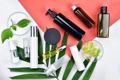 Καλλυντικά εμπορευματοκιβώτια μπουκαλιών με τα πράσινα βοτανικά φύλλα, κενή ετικέτα για το μαρκάρισμα του προτύπου, φυσική έννοια Στοκ Εικόνες