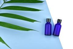 Καλλυντικά εμπορευματοκιβώτια μπουκαλιών με τα πράσινα βοτανικά φύλλα, κενή ετικέτα για το μαρκάρισμα του προτύπου, φυσική έννοια Στοκ Φωτογραφίες