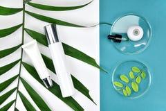 Καλλυντικά εμπορευματοκιβώτια μπουκαλιών με τα πράσινα βοτανικά φύλλα, κενή ετικέτα για το μαρκάρισμα του προτύπου, φυσική έννοια Στοκ Εικόνα