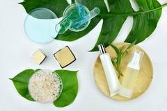 Καλλυντικά εμπορευματοκιβώτια μπουκαλιών με τα πράσινα βοτανικά φύλλα, κενή ετικέτα για το μαρκάρισμα του προτύπου Στοκ Φωτογραφίες