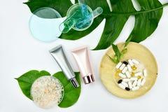 Καλλυντικά εμπορευματοκιβώτια μπουκαλιών με τα πράσινα βοτανικά φύλλα, κενή ετικέτα για το μαρκάρισμα του προτύπου Στοκ Φωτογραφία