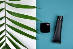 Καλλυντικά εμπορευματοκιβώτια μπουκαλιών με τα πράσινα βοτανικά φύλλα Στοκ φωτογραφία με δικαίωμα ελεύθερης χρήσης