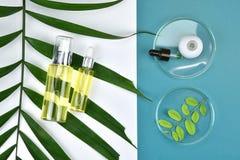 Καλλυντικά εμπορευματοκιβώτια μπουκαλιών με τα πράσινα βοτανικά φύλλα, κενή ετικέτα για το μαρκάρισμα του προτύπου, φυσική έννοια Στοκ Φωτογραφία
